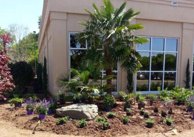 Tropical Landscaping Lee's Nursery