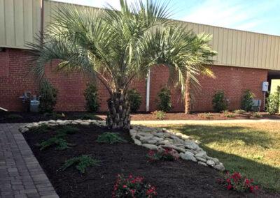 Stone Work and Palm Trees Lee's Nursery